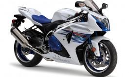 GSX-R 1000 Premium Edition, soli 100 esemplari