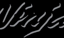 Ninja: in Kawasaki si festeggiano i 30 anni del logo