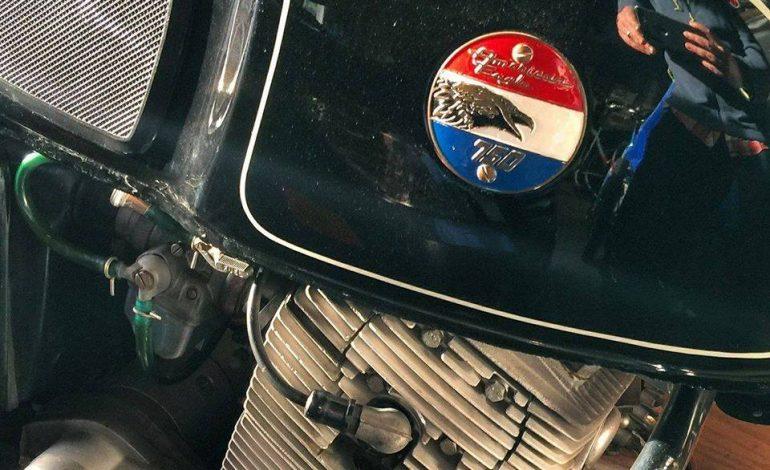 Mojave e American Eagle, nomi esotici per due italiane purosangue